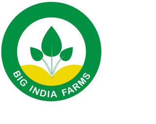 big-india-farms-logo-small